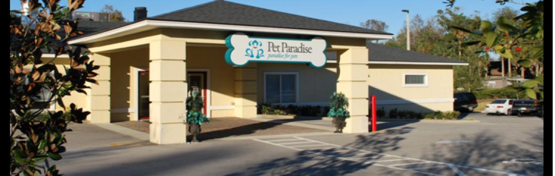 New 'Pet Resort' To Open Near Orlando International Airport